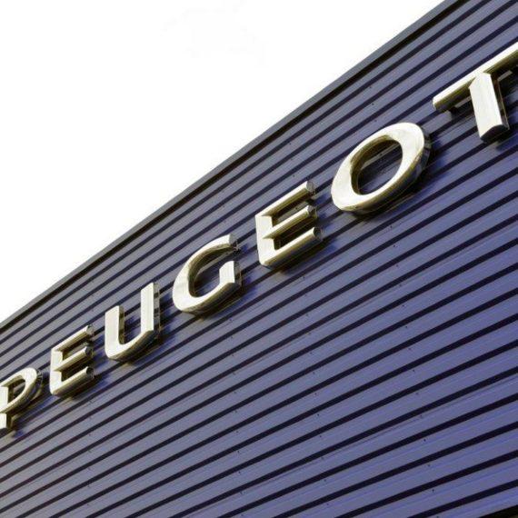 Проект автосалона СТО Pegeot